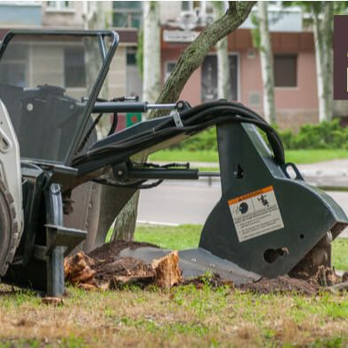 stump grinding in orland park
